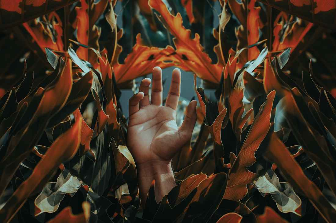 hand among orange leaves